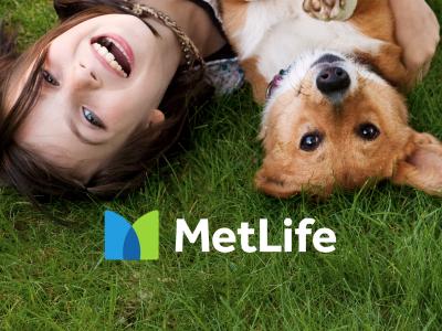 MetLife.com Redesign